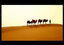 新疆旅游宣传片