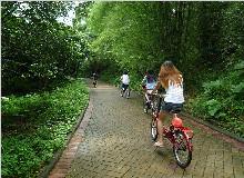 南昆山国家森林公园、绿道单车、锦绣香江温泉休闲两日游