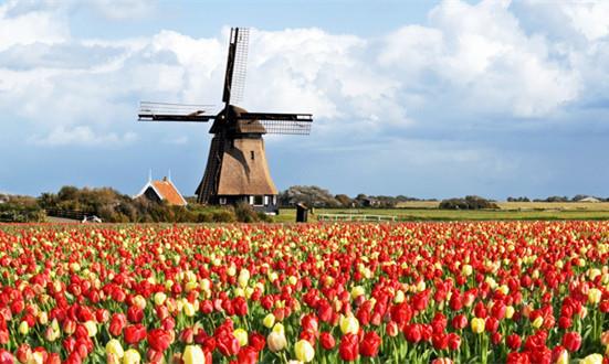 荷兰风车村