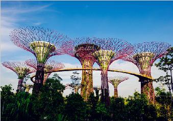 【惠游新加坡】新加坡+民丹岛精华5天游(达人推荐)