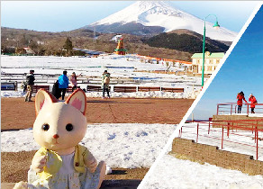 【雪景童话】日本本州、富士山玩雪乐园、京阪美食温泉之旅(全网热卖)